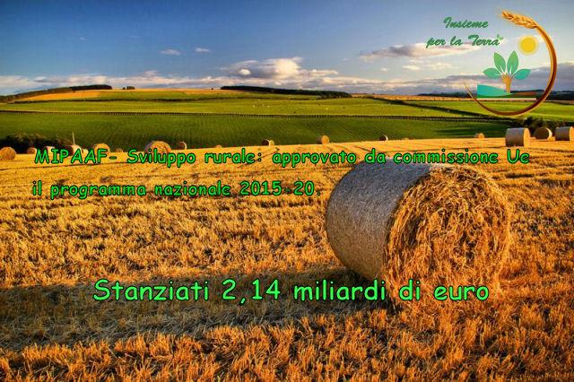 MIPAAF su sviluppo rurale: approvato da commissione UE il programma nazionale 2015-20. Stanziati 2,14 miliardi di euro