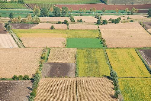 #Terreni agricoli: cadono i #prezzi, salgono gli #affitti