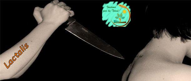 """#Lactalis """"pugnala"""" alle spalle i propri #allevatori"""