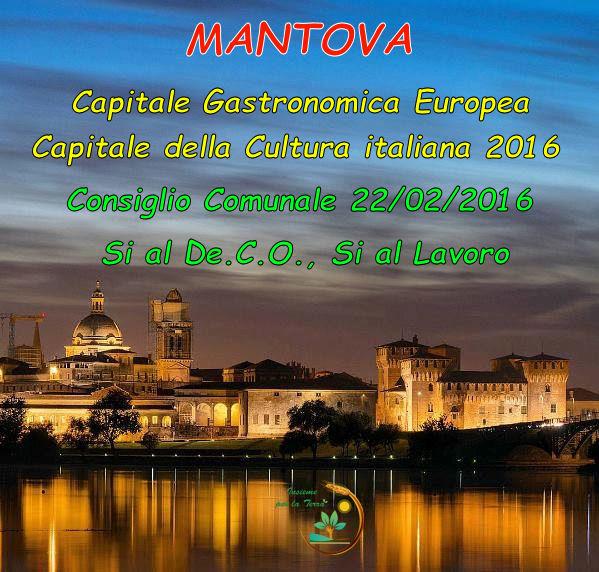 De.C.O. #Mantova, domani al voto. Appello a tutto il Consiglio Comunale