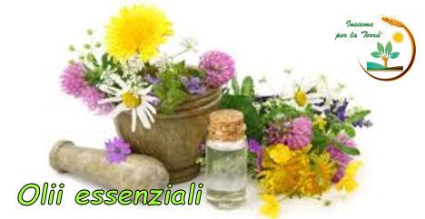 Naturopatia con Francesca: La #Spa a casa tua con gli Olii #essenziali