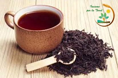 Naturopatia di Francesca – #Tè nero