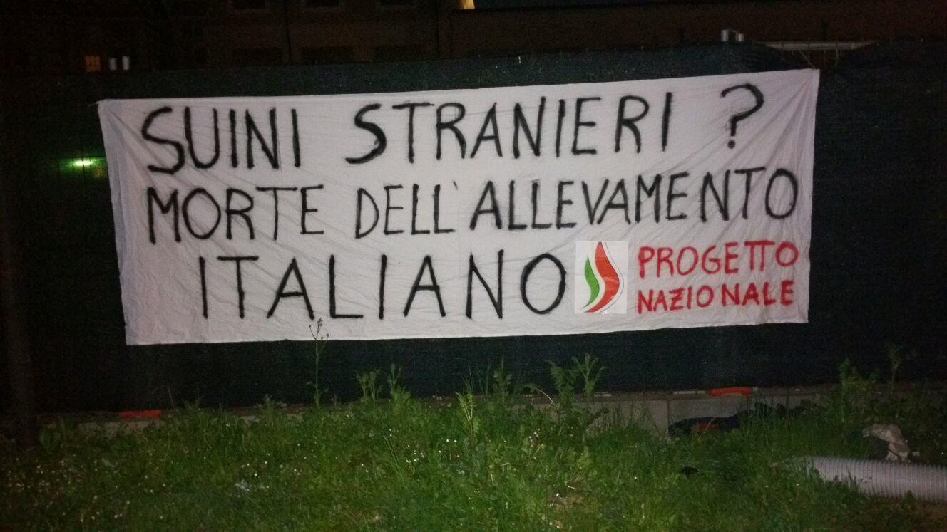 Stop #suini stranieri, scoppia la rivolta politica a tutela della suinicoltura italiana