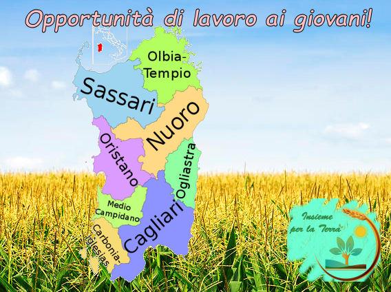 Sardegna, terreni pubblici ai giovani #agricoltori