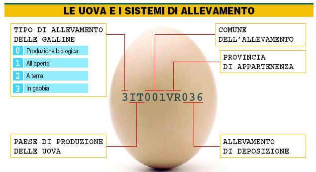 I consigli di Matteo: uova o non #uova