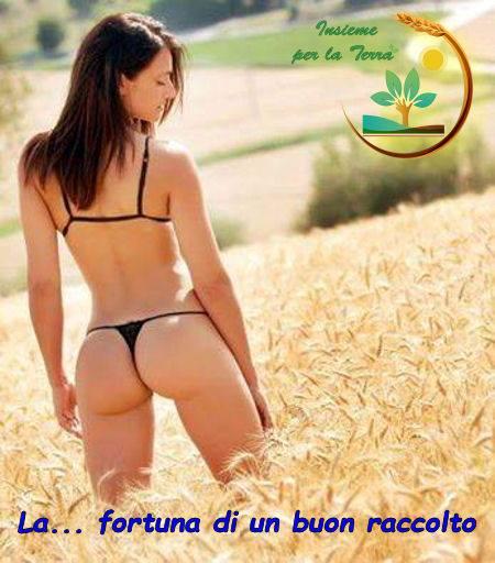 Come svegliare i #sindacati agricoli italiani ?