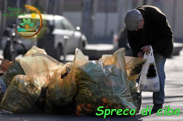 Lo #spreco di #cibo, una dura realtà