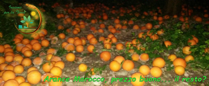 #Arance siciliane? No, grazie. Meglio quelle marocchine