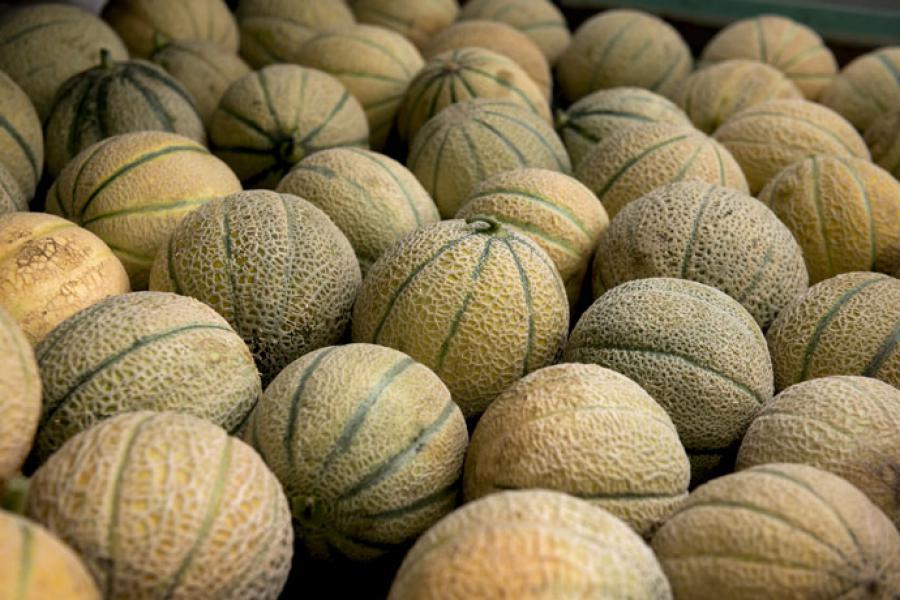 Frutta: #Mantova prima in #Lombardia ma la #Coldiretti dimentica il #prezzo