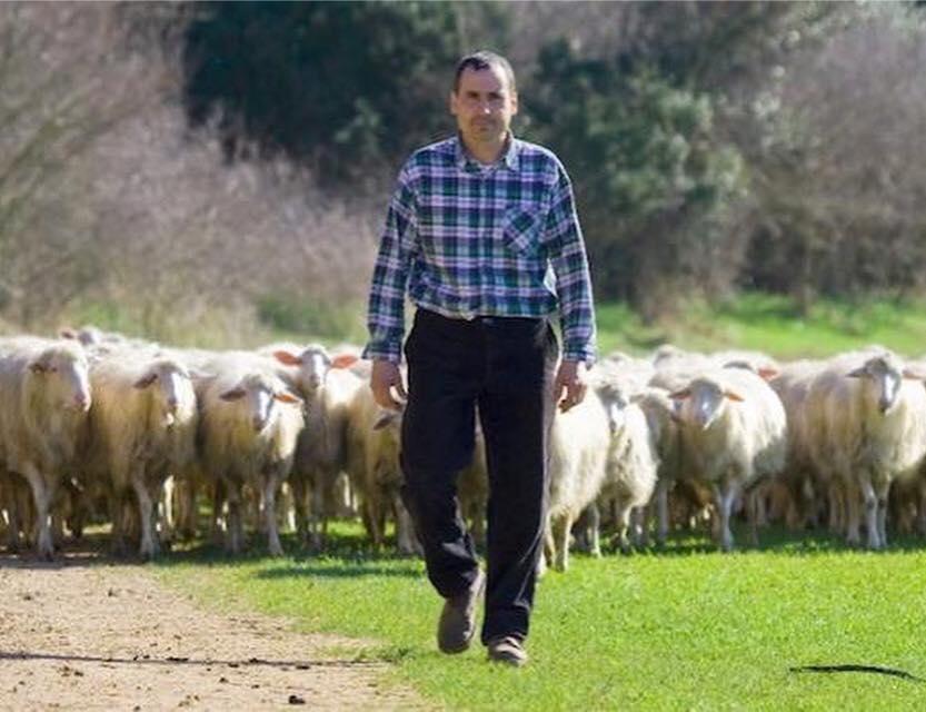 Meglio #pastore che Flavio #Briatore