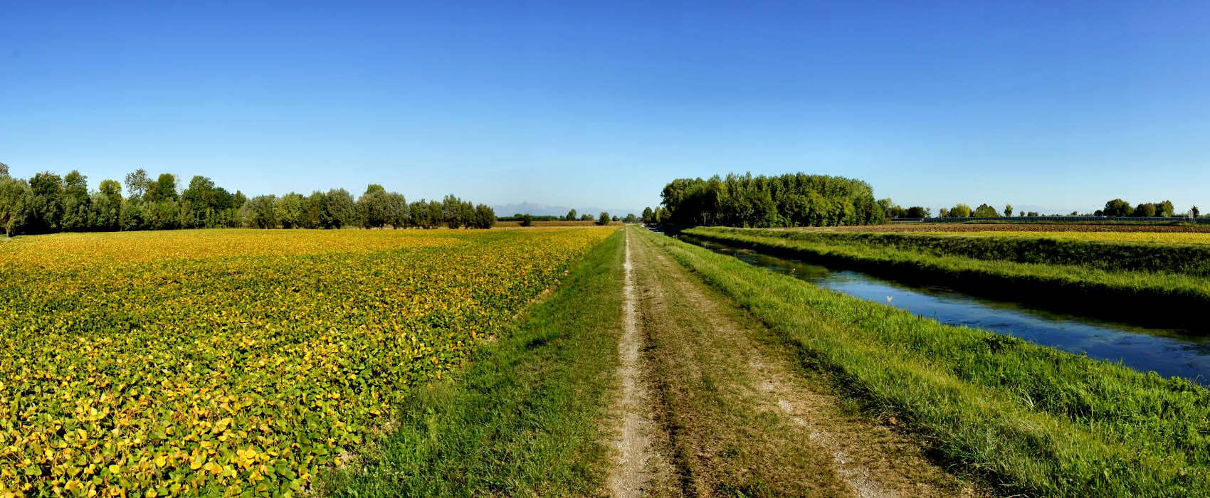 L'#agricoltura arranca e serve un #rinnovamento dalle fondamenta. Chi fa la prima mossa?