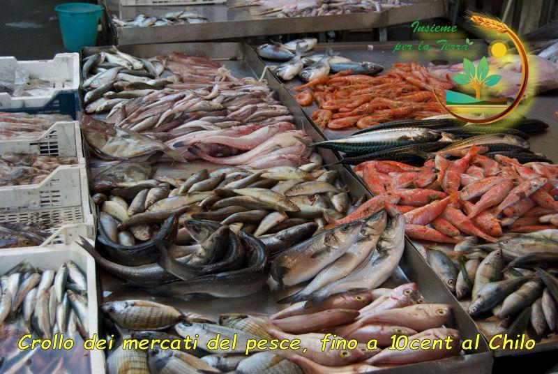 #Pesca: Il #prezzo del pescato quasi a #zero, mercato a rischio