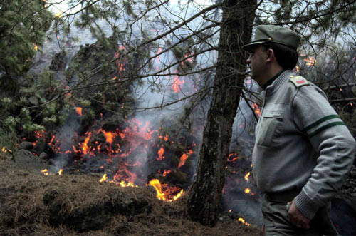 Incendi e calamità: esempio di come la #politica favorisca l'abbandono del #territorio