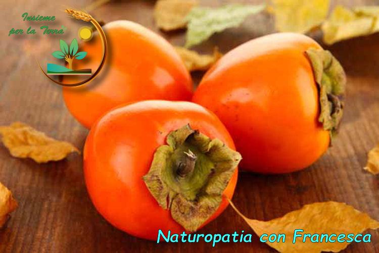 #Naturopatia con #Francesca – #Cachi: un ottimo frutto per autunno ed inverno
