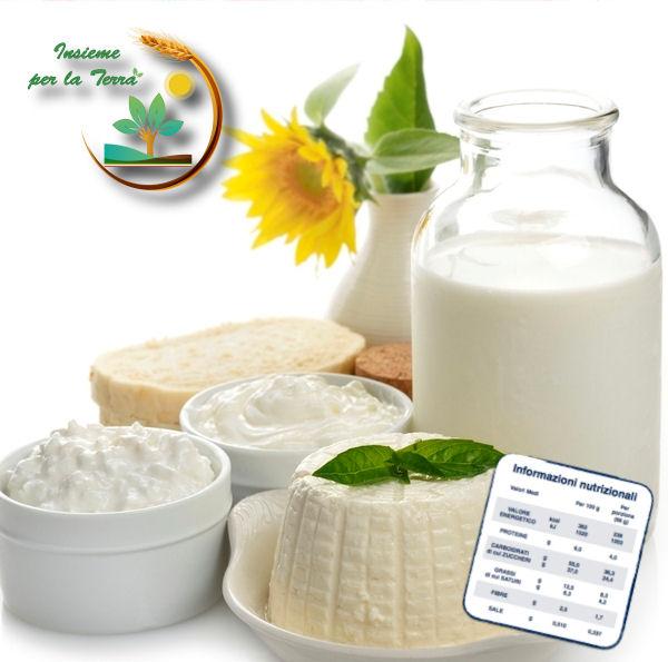 Etichettatura Latte: salvate le sottilette, affondate le Dop