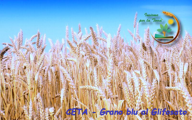 CETA – Grazie all'EU ed ai nostri #Europarlamentari, in #tavola 4 milioni di tonnellate di #grano #tossico