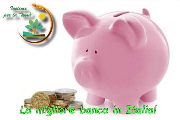 Le #banche italiane non amano le start-up nostrane. Lettera aperta a Insieme per la Terra