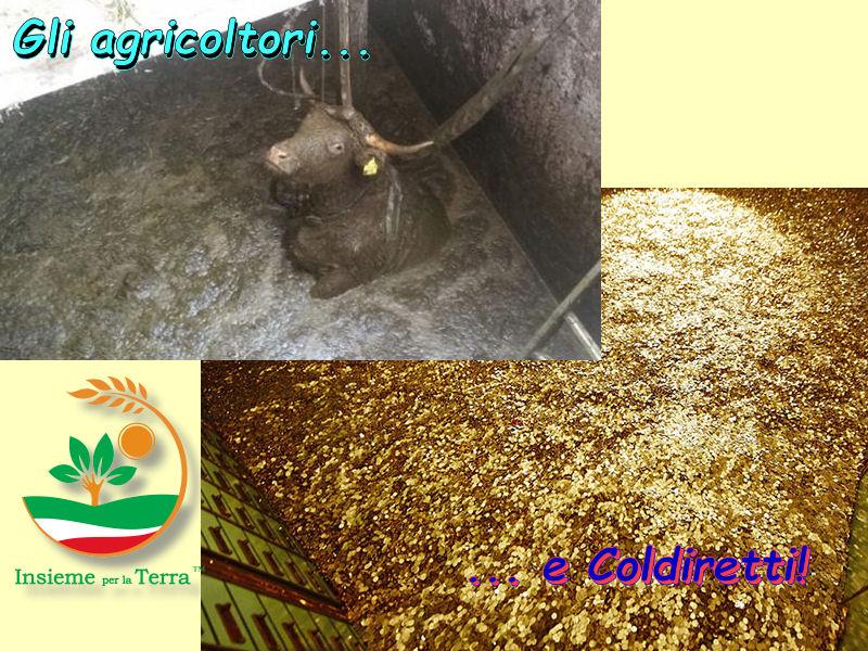 Gli #agricoltori navigano nel fango, la #Coldiretti naviga nell'oro