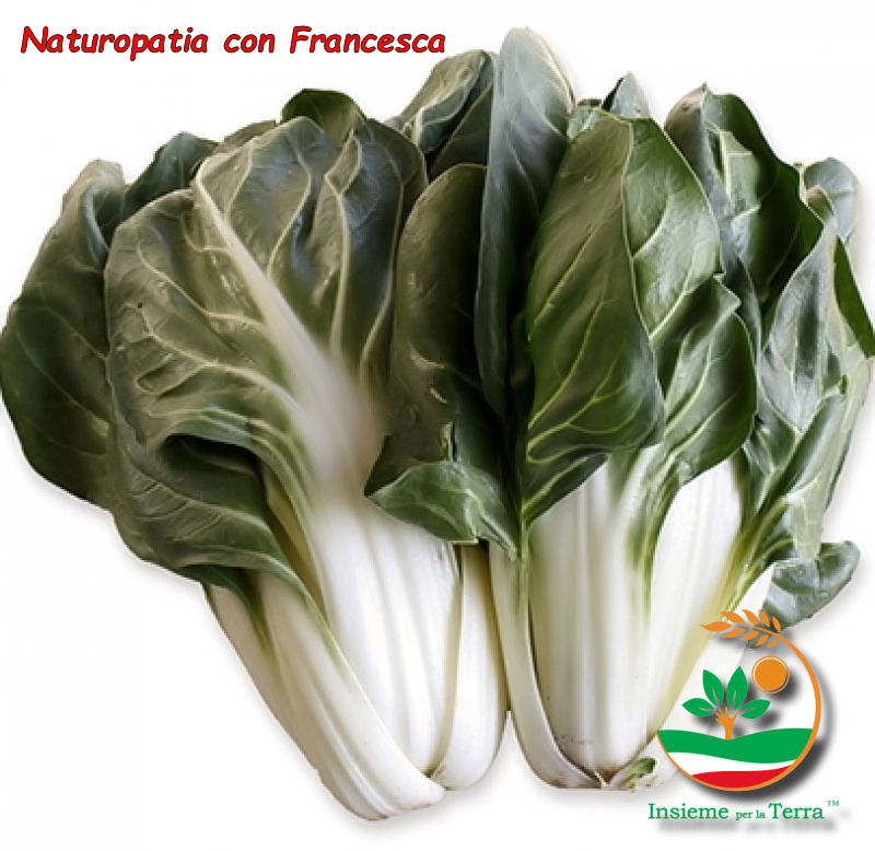 Naturopatia con Francesca – Settembre… tempo di #Bietole!