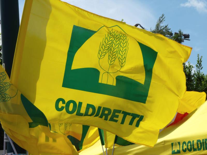Il neopresidente di Coldiretti condannato per ricettazione, trafugati capitelli da una chiesa